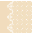 lace border on beige background vector image vector image