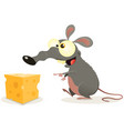 cartoon rat and piece of cheese vector image