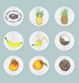 Icons with tropical fruits vector image
