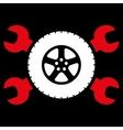 Tire Service Icon vector image