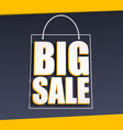 Big sale advertisement vector image vector image