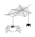 cute spiders with spiderweb halloween decoration vector image