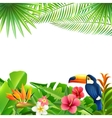 Tropical Landscape Background vector image