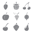 Set of gray icons of fruits vector image