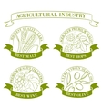 Set of emblems and labels vector image vector image
