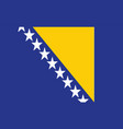 bosnia flag - bosnia and herzegovina vector image