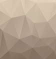 Abstract brown backgrounds vector image vector image
