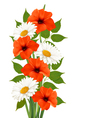 Summer background with colorful beautiful flowers vector image vector image
