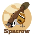 ABC Cartoon Sparrow vector image