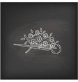 doodle garden cart vector image