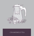 glass teapot or pitcher with strainer cup of tea vector image
