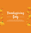 thanksgiving day pumpkin background collection vector image