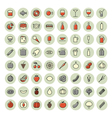 icons thin red all food vector image