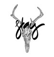 animal skull with hand drawn lettering vector image