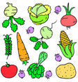 vegetable various set of doodles vector image