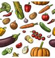 seamless pattern vegetables cucumbers garlic vector image vector image