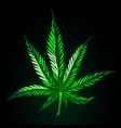 green cannabis leaf on black background vector image