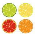 lemone lime orange icon citrus set refreshing vector image