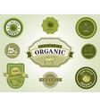 Set of organic food labels vector image