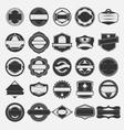Set of vintage label vector image vector image