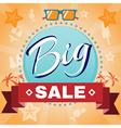 Summer Big Sale Promotion vector image