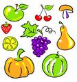 fruits vegetables berries vector image