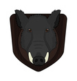 Stuffed taxidermy wild boar head vector image