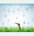 warm rain with drops of water and grass vector image