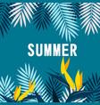 summer jungle blue background image vector image