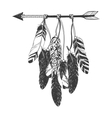 Native American Indian Dreamcatcher with feathers vector image