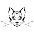 head cat tattoo vector image