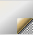 Page curl with transparent curled gold corner vector image