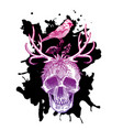 sketch the skull vector image