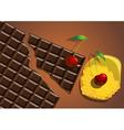 chocolate vector image