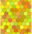 Honeycomb color pattern vector image vector image