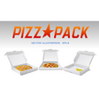 pizza packaging vector image