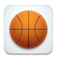 Basketball icon on white vector image