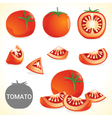Set of tomato in various styles and format vector image