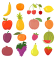 Set of hand drawn cartoon fruits vector image