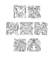 Square decorative celtic motifs of animals and vector image vector image