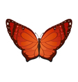 red butterflies vector image