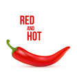 Red chilli pepper isolated on white background vector image