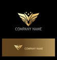 gold abstract wing emblem star logo vector image