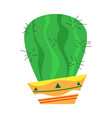 isolated cactus icon vector image