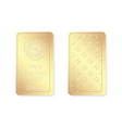 100g minted gold bar vector image vector image