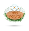 Wood panel banner with camomile vector image