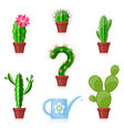 Cactuses and Watering Can vector image