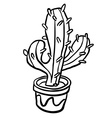 black and white cactus in a pot vector image