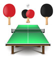 table tennis set isolated on white vector image