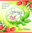 spring time greeting card tulip flowers vector image
